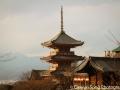 Tō-ji from afar