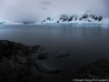 Beautiful Antarctica Landscape and Weddell Seal