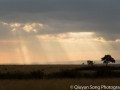 Light falls on the Mara