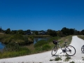 Cycling: one of the best ways to experience New Zealand