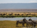 The amazing landscape of the Ngorongoro Crater